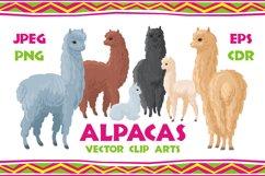 Alpacas. Vector clip arts. Product Image 1