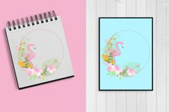Flamingos clipart mega pack, graphics, illustrations AMB-1047 Product Image 4