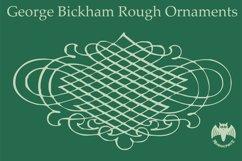 George Bickham Rough Ornaments Product Image 2