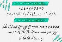 Wild Indigo Script Font Product Image 3