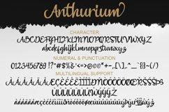 Anthurium Product Image 6