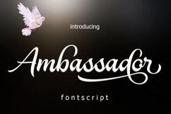 Ambassador Product Image 1