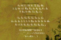 Nikiye Font Product Image 2