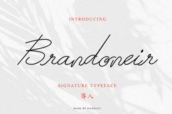Brandoneir Signature Typeface Product Image 1