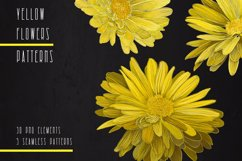 PATTERNS with YELLOW FLOWERS Product Image 3