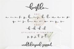 Bristle - Beautiful Font Script Product Image 4