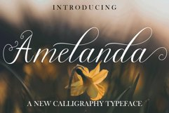 MEGA BUNDLE COLLECTION 30 FONTS Product Image 14