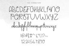 Darlington Park - Unique Handwritten Font Product Image 6