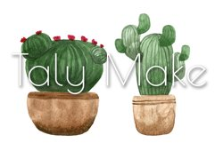 Seamless pattern of watercolor green cacti Product Image 5