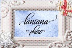 Lantana Product Image 6