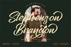 Stephenson Brandon - Premium Brush Font Product Image 1