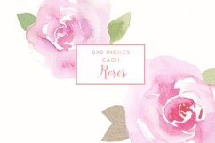 6 watercolor rose illustrations Product Image 2