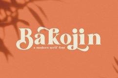Bakojin//Modern Serif Font Product Image 1
