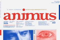 ANIMUS - Serif font family Product Image 1