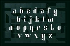 Matrix   Modern Serif Product Image 6