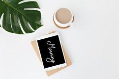 Gemblo Calligraphy Monoline Font Product Image 4