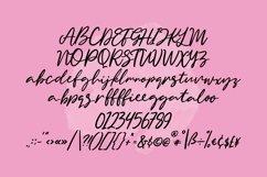 Web Font Gingerball - Script Font Product Image 4