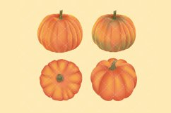 Autumn Flower Clip Art Product Image 4