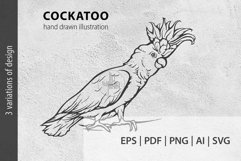 Cockatoo ink lineart, Parrot clip art, Bird vector file Product Image 1