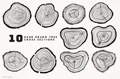 Timber Vector Tree Rings Illustrations Product Image 4