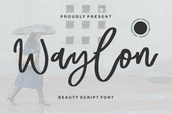 Web Font Waylon - Beauty Script Font Product Image 1