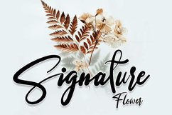 Sannastasa | Modern Typeface Font Product Image 3