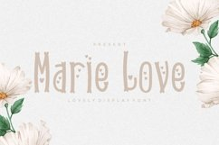 Marie Love Font Product Image 1