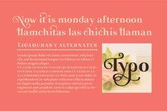 Gorni Typeface Product Image 4