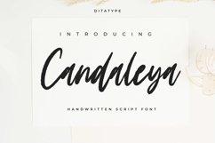 Candaleya Product Image 1