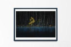 Yellow Tree - Wall Art - Digital Print Product Image 4
