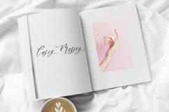 Raspberry Milkshake Script Font Product Image 6