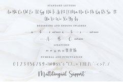 Cosette - Modern Script Font Product Image 2