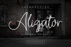 Aligator Signature Font Product Image 1