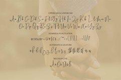 Web Font Sawyer - A Handwritten Script Font Product Image 4