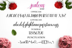 Jealous Script  Product Image 9