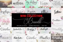 The MINI COLLECTION Bundle Product Image 1