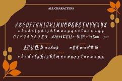 Sthefany   Handwritten Script Font Product Image 4