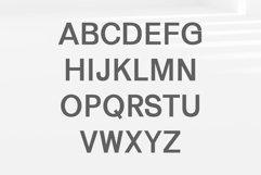 Gerard Sans Serif Font Family Product Image 2