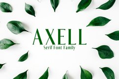 Axell Serif Font Family Product Image 1