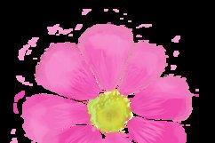Mira & graphic watercolor & swirls Product Image 6
