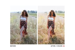 Film Look - Lightroom & Photoshop Camera Raw Presets Product Image 5