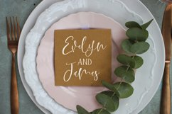 Pink Swan Font Duo Product Image 2