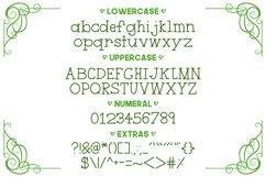 Handyman Serif Handdrawn Font Product Image 2