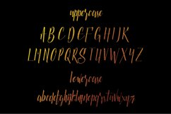 Luxurious Line Typeface Product Image 2