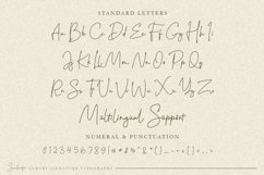 Sanliurfa Stylish Signature Product Image 2