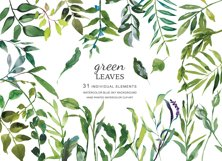 Hand Painted Watercolor Green Leaf Clip Art Product Image 2