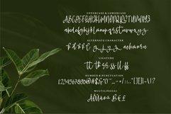 Web Font Rindyani - A Beauty Script Font Product Image 2