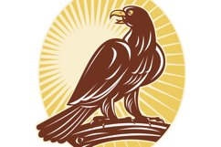 Eagle perching on branch sunburst Product Image 1