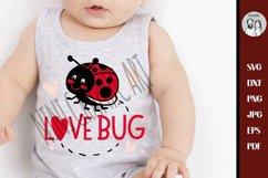 Love bug svg, Ladybird beetle svg, Lady Bug Svg, Product Image 1