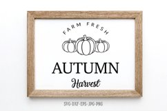Fall sign bundle, pumpkin SVG, Fall Circle SVG, fall svg Product Image 5